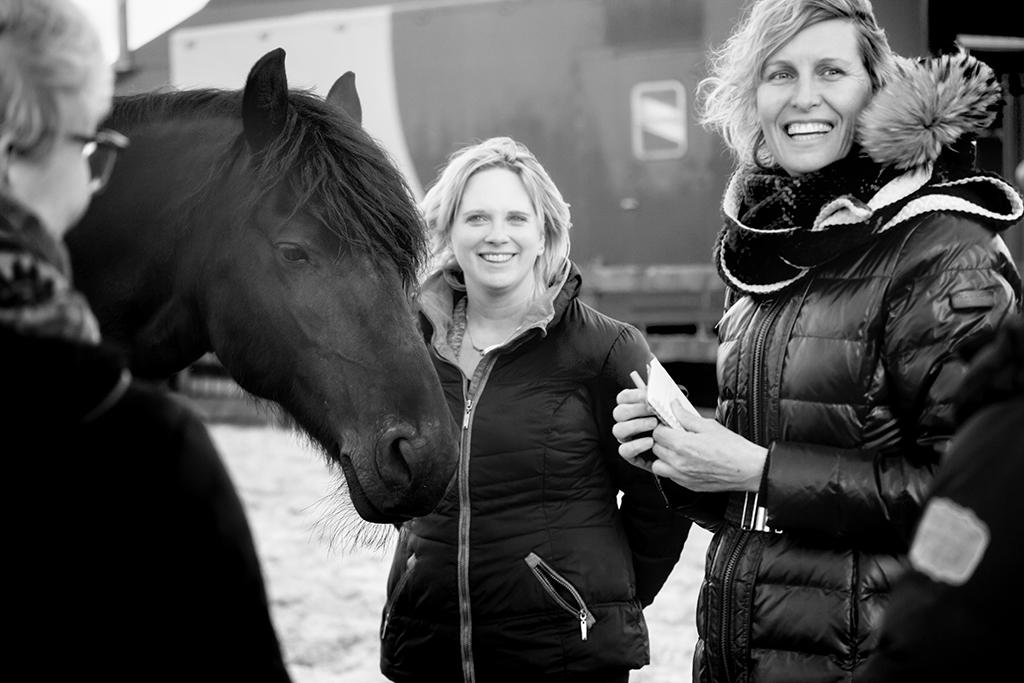 workshop paard -karijn fotografie